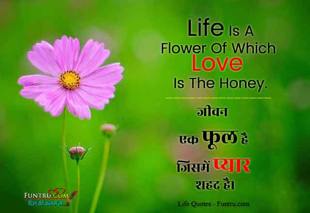 Life Is A Flower - Life Quotes